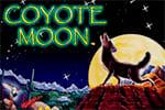 tragamoneda coyote moon